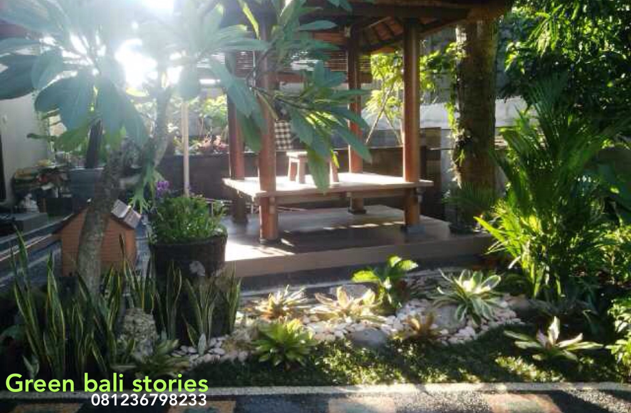 Green bali Stories